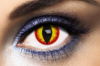 Lentilles Fantaisie Diable Rouge Devil Red 1 an