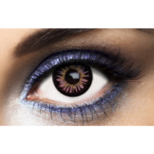 Lentilles De Couleur Violettes New York Purple Violet 1 an