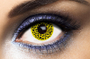 Lentilles Fantaisie Jaunes Tarzan Yellow Cheetah 1 an